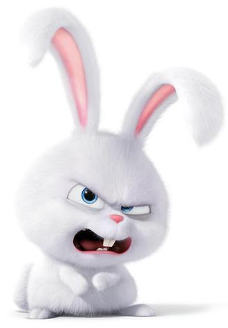 Bad Rabbit2.png